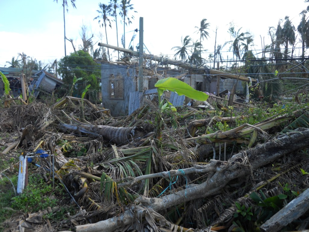Eyewitness Account Of The Aftermath Of Typhoon Yolanda